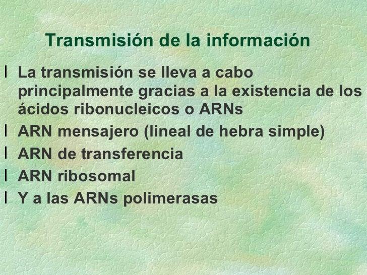 Transmisión de la información  <ul><li>La transmisión se lleva a cabo principalmente gracias a la existencia de los ácidos...