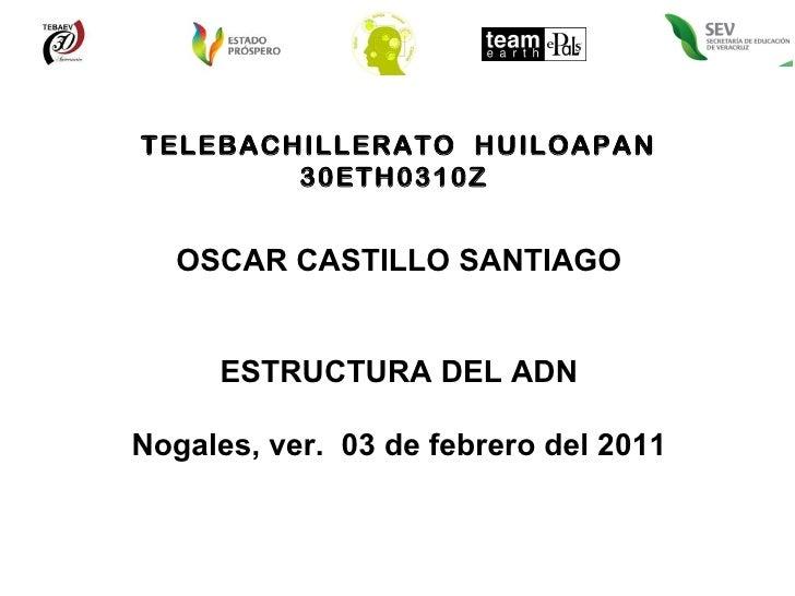 TELEBACHILLERATO  HUILOAPAN 30ETH0310Z  OSCAR CASTILLO SANTIAGO ESTRUCTURA DEL ADN Nogales, ver.  03 de febrero del 2011