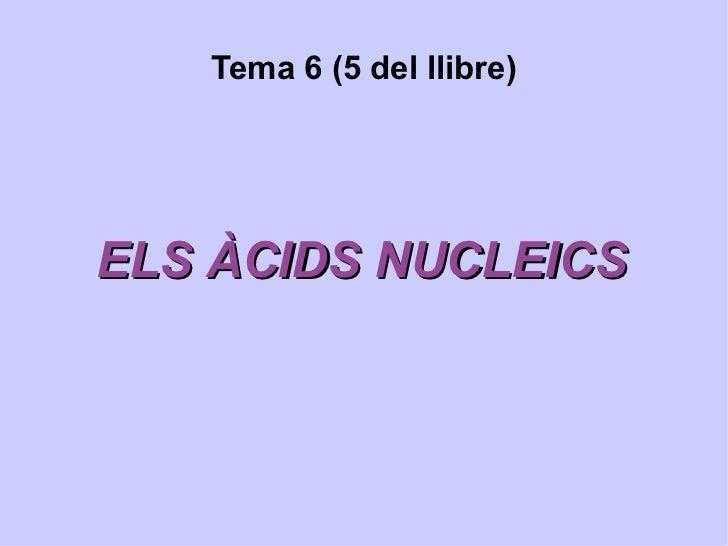 Tema 6 (5 del llibre) ELS ÀCIDS NUCLEICS