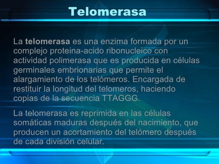 Telomerasa  La  telomerasa  es una enzima formada por un complejo proteina-acido ribonucleico con actividad polimerasa que...