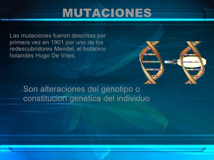 MUTACIONES Las mutaciones fueron descritas por primera vez en 1901 por uno de los redescubridores Mendel, el botánico hola...