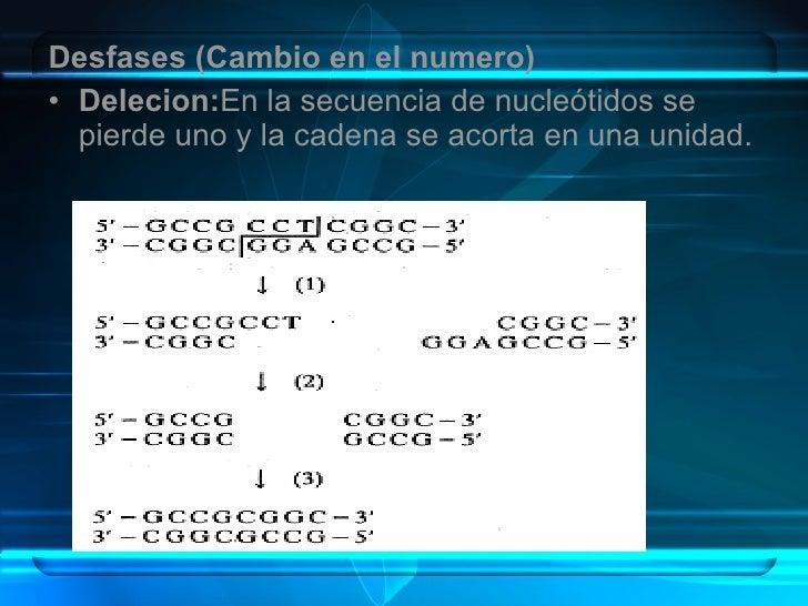 <ul><li>Desfases (Cambio en el numero) </li></ul><ul><li>Delecion: En la secuencia de nucleótidos se pierde uno y la caden...