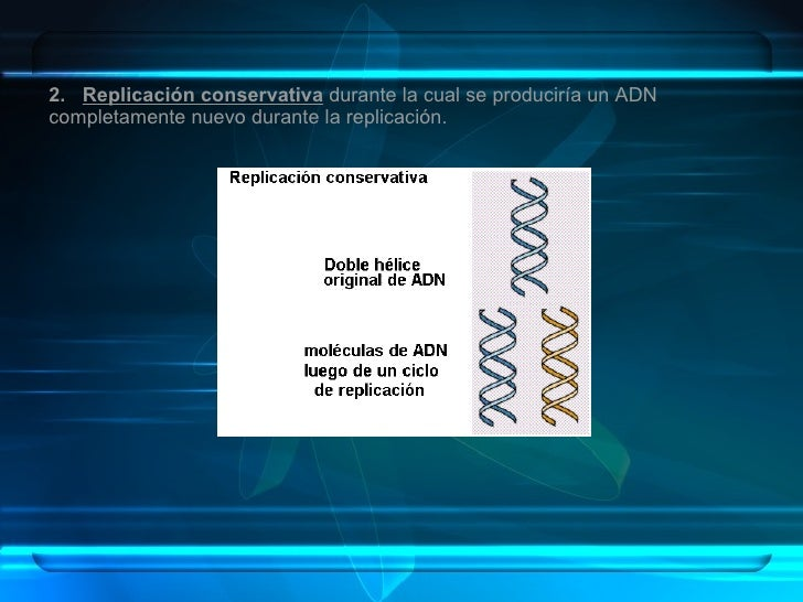 2.  Replicación conservativa  durante la cual se produciría un ADN completamente nuevo durante la replicación.