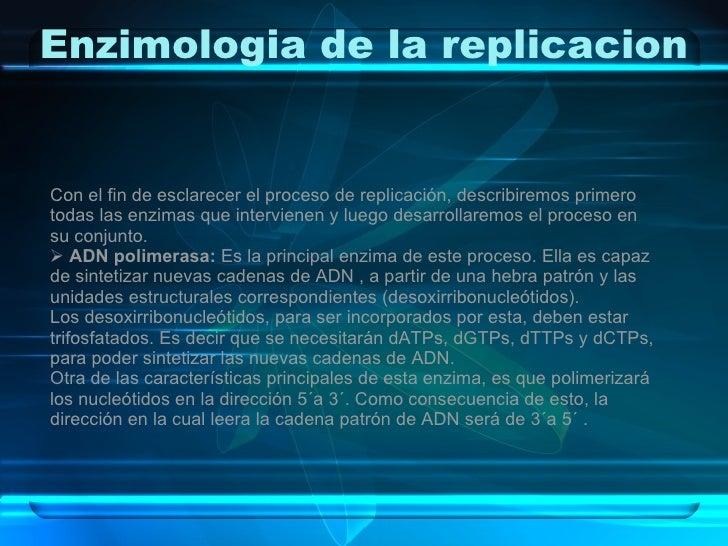 Enzimologia de la replicacion <ul><li>Con el fin de esclarecer el proceso de replicación, describiremos primero todas las ...