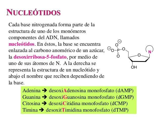 Adn Slide 3