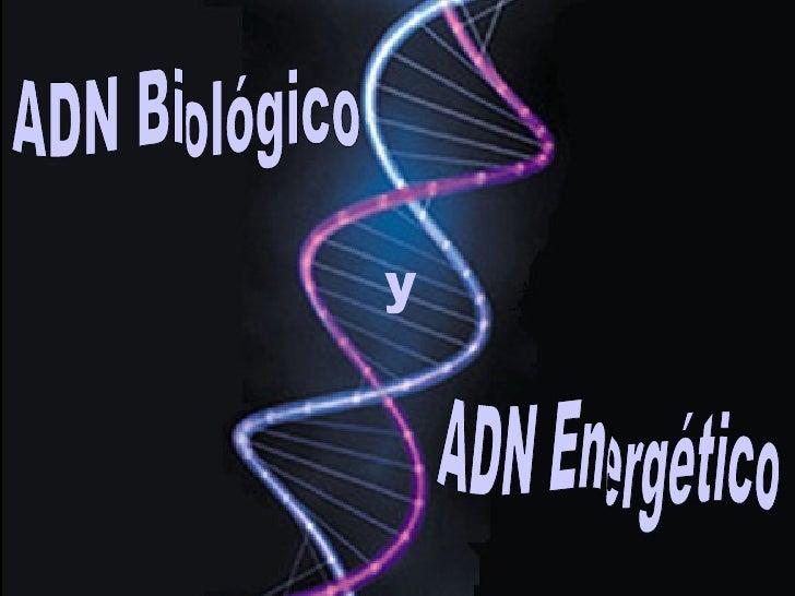 ADN Biológico ADN Energético y