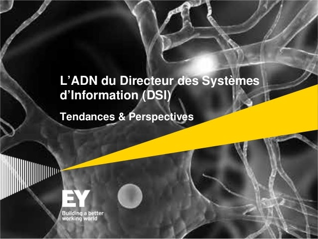 L'ADN du Directeur des Systèmes d'Information (DSI) Tendances & Perspectives
