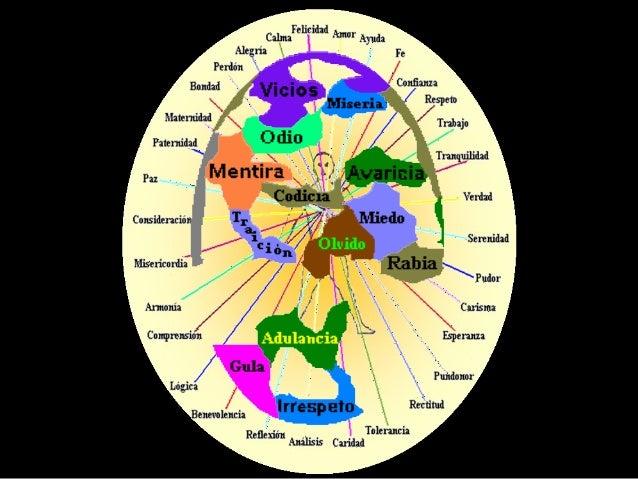Por otra parte, el flujo de energías que conforma el ADN Energético, es el encargado de dirigir cada segmento de cada fila...