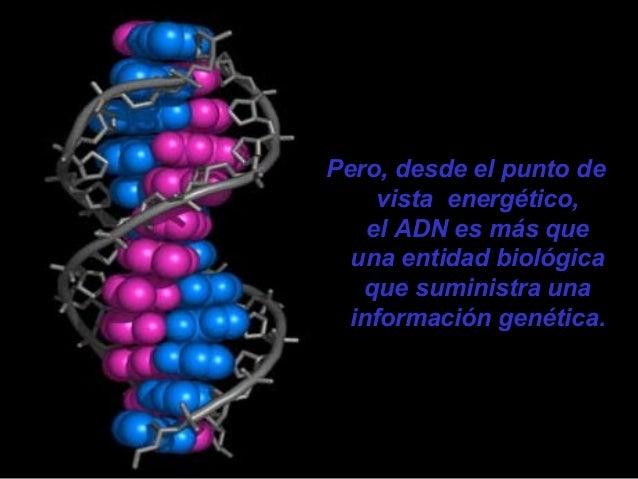 Su funcionamiento depende, única y exclusivamente, de la información suministrada por el ADN Energético Individual.