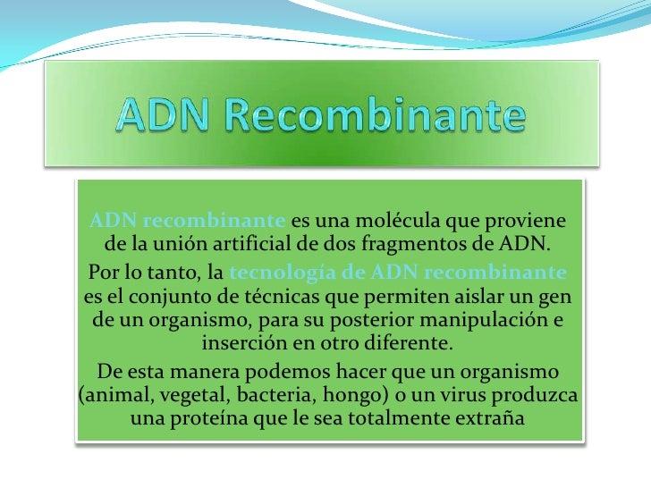 ADN Recombinante<br />ADN recombinantees una molécula que proviene de la unión artificial de dosfragmentos de ADN. <br />P...