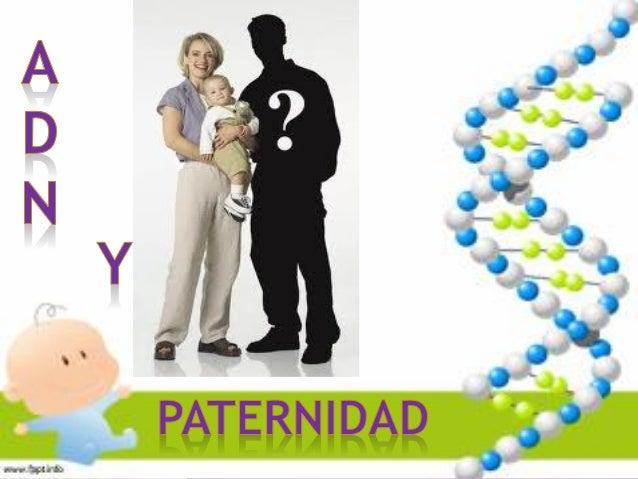 HISTORIA DEL ADN 1869 , friedrich miescher aisló el ADN y lo llama nucleina. 1919, phoebus levene identifico que un nucleó...