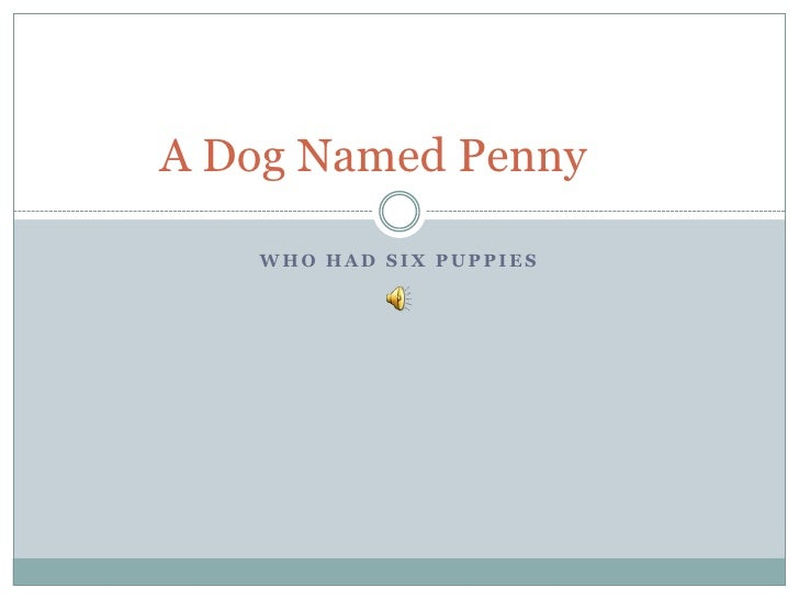 A Dog Named Penny   WHO HAD SIX PUPPIES
