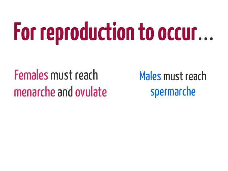 For reproduction to occur…Females must reach     Males must reachmenarche and ovulate     spermarche
