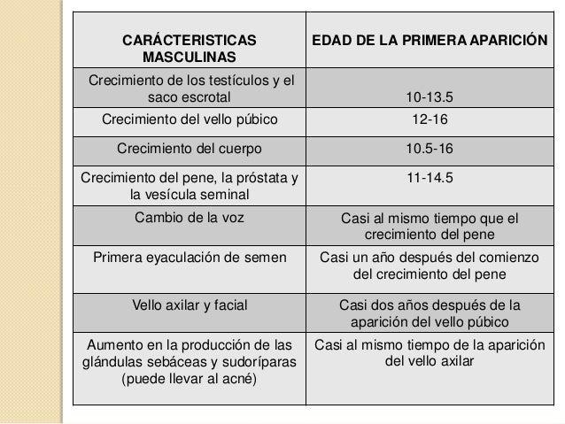 OVARIOSTROMPAS DE FALOPIOÚTEROVAGINATESTÍCULOSPENEESCROTOVESÍCULA SEMINALPRÓSTATACARÁCTERISTICAS PRIMARIAS:ORGANOS SEXUALES