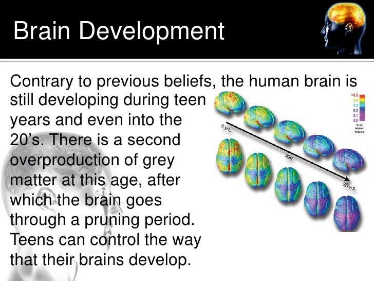 adolescent brain development Consistent with this adolescence-vulnerability concept, neuroimaging and neuropsychological research in adolescents has shown that adolescent substance use is associated with abnormalities in the volume of specific brain structures, the integrity of networks connecting them, brain activation related to cognitive tasks, and neuropsychological.