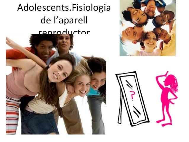 Adolescents.Fisiologia     de l'aparell    reproductor