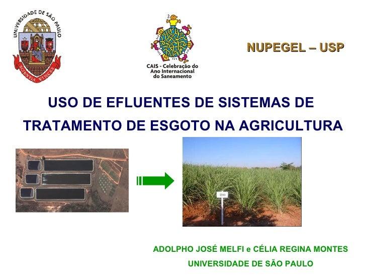 USO DE EFLUENTES DE SISTEMAS DE  TRATAMENTO DE ESGOTO NA AGRICULTURA ADOLPHO JOSÉ MELFI e CÉLIA REGINA MONTES UNIVERSIDADE...
