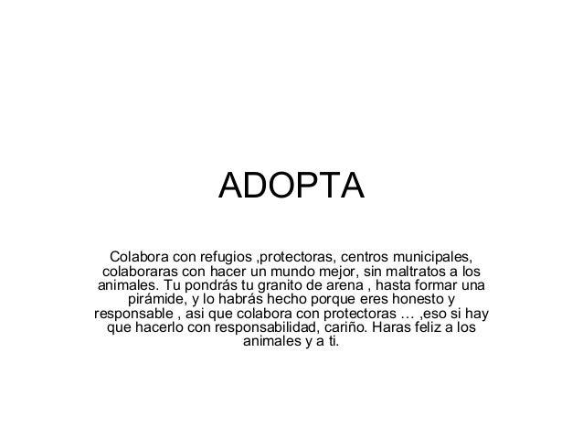 ADOPTA Colabora con refugios ,protectoras, centros municipales, colaboraras con hacer un mundo mejor, sin maltratos a los ...