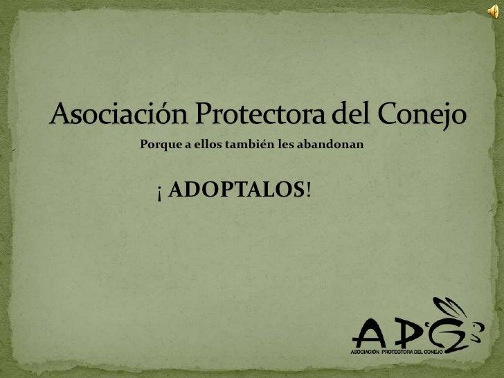 Asociación Protectora del Conejo<br />Porque a ellos también les abandonan<br />¡ ADOPTALOS!<br />