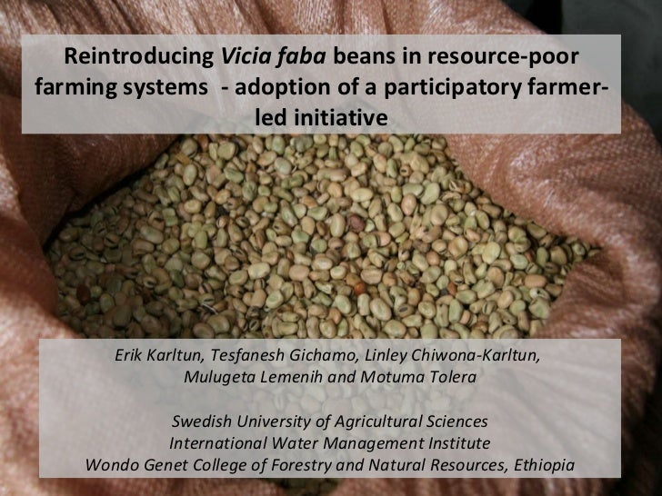 Reintroducing  Vicia faba  beans in resource-poor farming systems  - adoption of a participatory farmer-led initiative Eri...