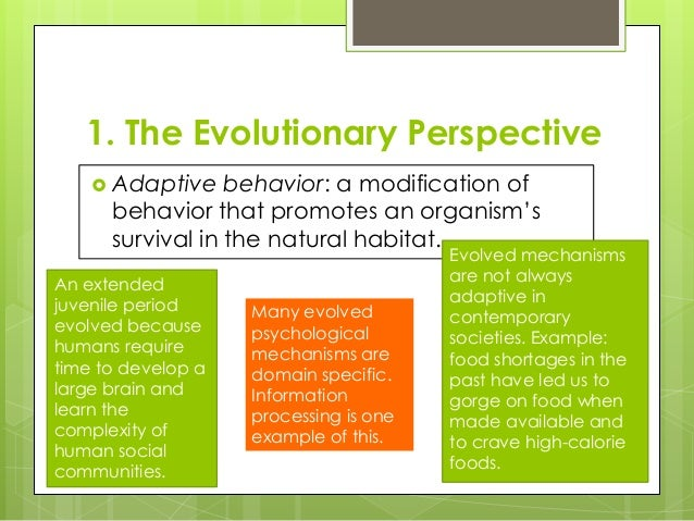 psychology perspectives and the biological foundations A biological perspective are relevant within biological psychology they are reader to the primary biological foundations of psychology that are linked to.