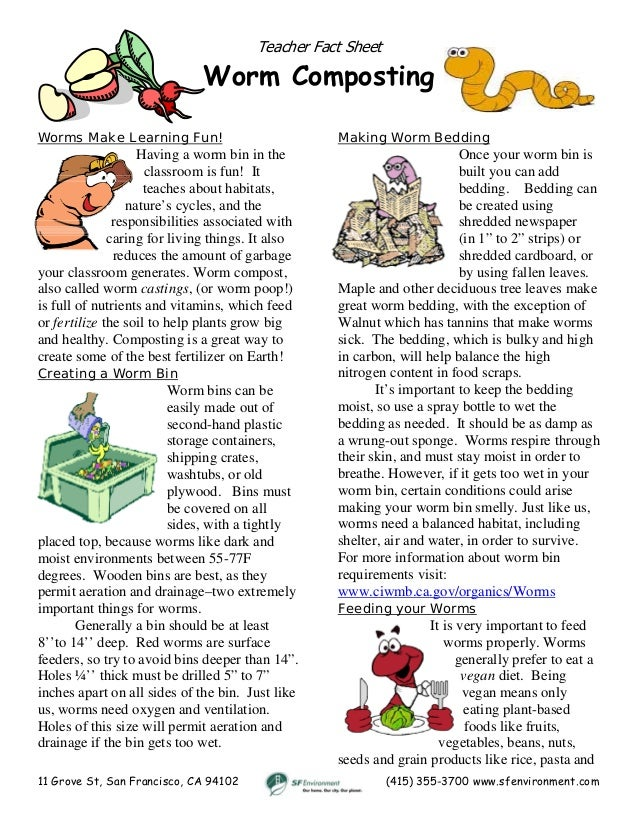 Teacher Worm Composting Guide