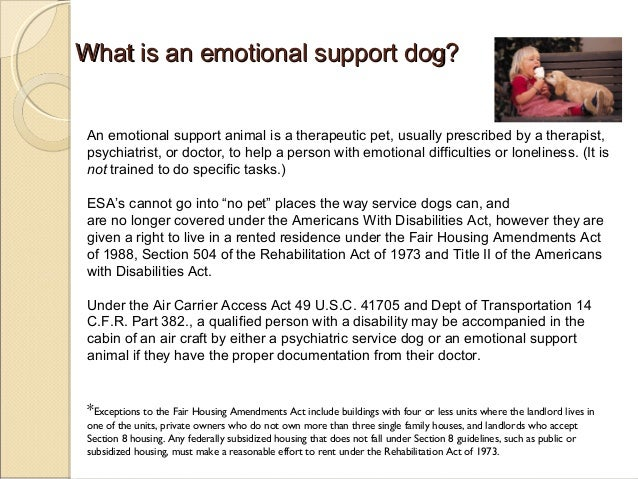 service dogs, therapy dogs, emotional support animals