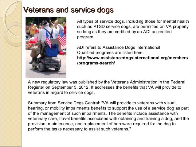 Image of: Certification Veterans Militarycom Service Dogs Therapy Dogs Emotional Support Animals