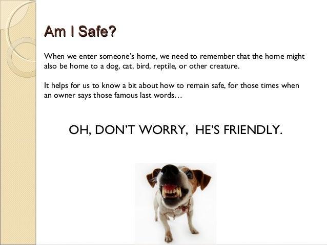 Training Your Own Psychiatric Service Dog By Katie Gonzalez
