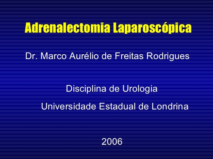 Adrenalectomia Laparoscópica Dr. Marco Aurélio de Freitas Rodrigues 2006 Disciplina de Urologia Universidade Estadual de L...