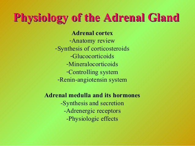 Physiology of the Adrenal GlandPhysiology of the Adrenal Gland Adrenal cortex -Anatomy review -Synthesis of corticosteroid...