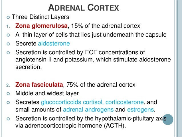 zona fasciculata of the adrenal cortex produces what steroid hormone