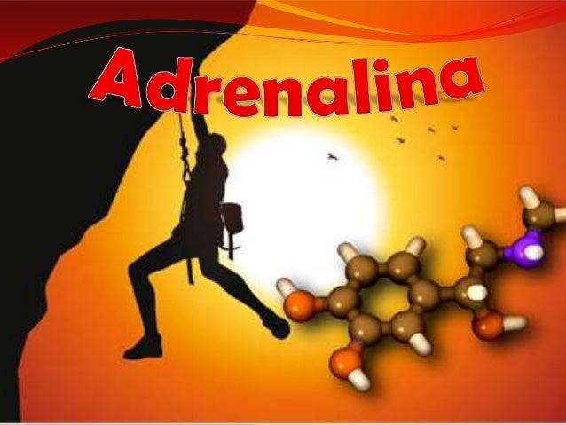 A adrenalina ou epinefria é um hormônio produzido pelas glândulas supra renais, é também um neurotransmissor, derivado da ...