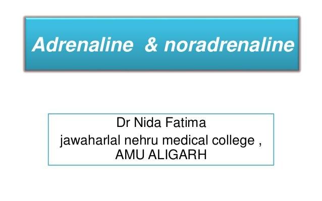 Adrenaline & noradrenaline Dr Nida Fatima jawaharlal nehru medical college , AMU ALIGARH