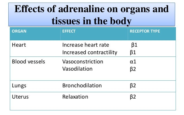 Epinephrine in out-of-hospital cardiac arrest: A critical review