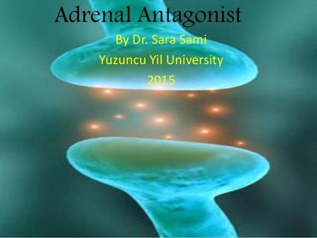 Adrenal Antagonist By Dr. Sara Sami Yuzuncu Yil University 2015