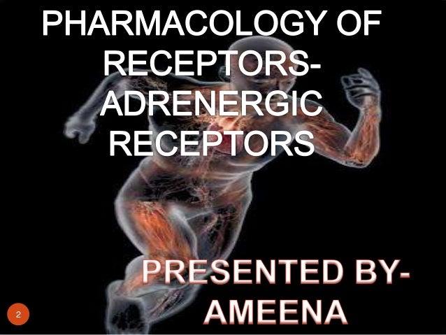 Adrenergic receptors Slide 2