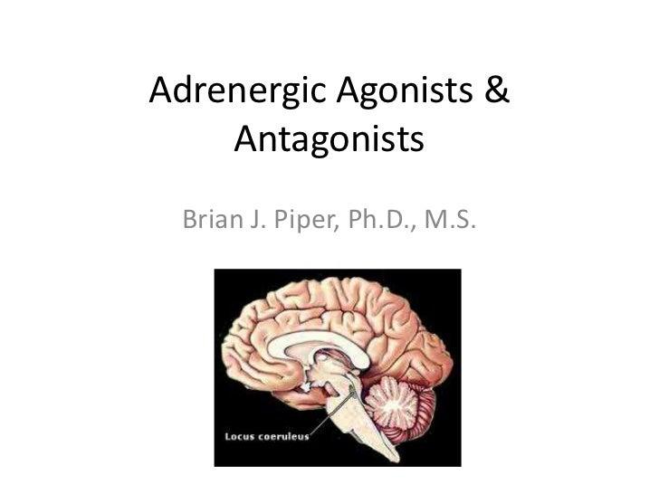 Adrenergic Agonists &    Antagonists Brian J. Piper, Ph.D., M.S.