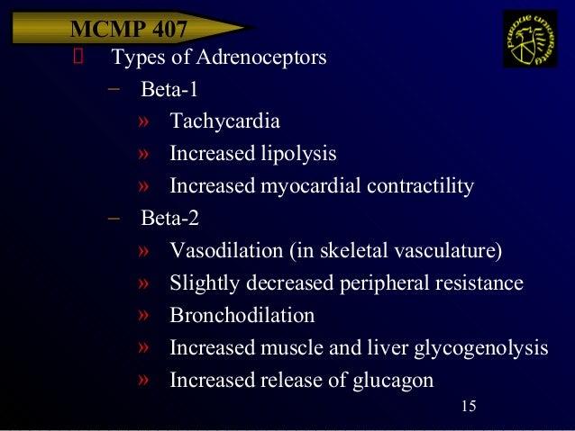 Adrenergic Antagonists Alpha And Beta Blockers