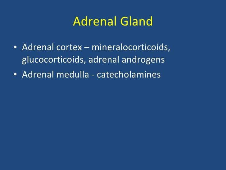 adrenocorticosteroids drugs examples