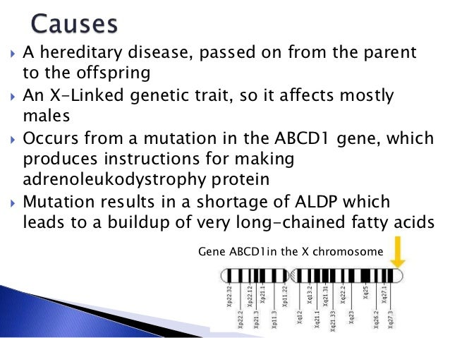 a description of adrenoleukodystrophy ald as a rare and genetic disorder Description of adrenoleukodystrophy (ald) is a rare, genetic disorder characterized by the breakdown or loss of the myelin sheath surrounding.