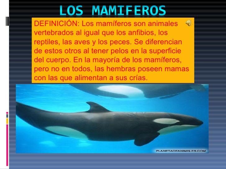 DEFINICIÓN: Los mamíferos son animales vertebrados al igual que los anfibios, los reptiles, las aves y los peces. Se difer...