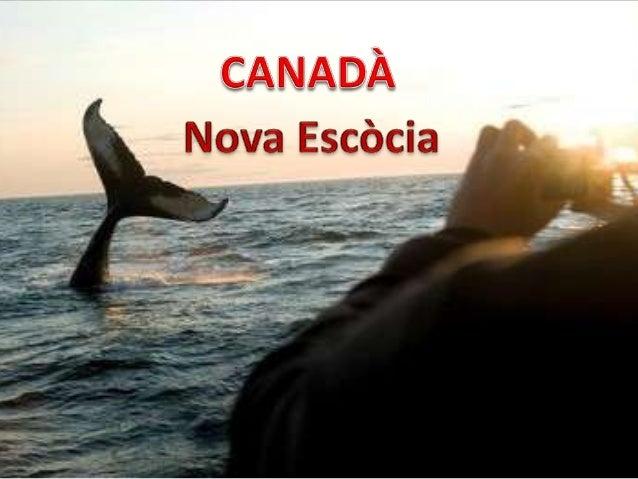 La bandera de Canadà