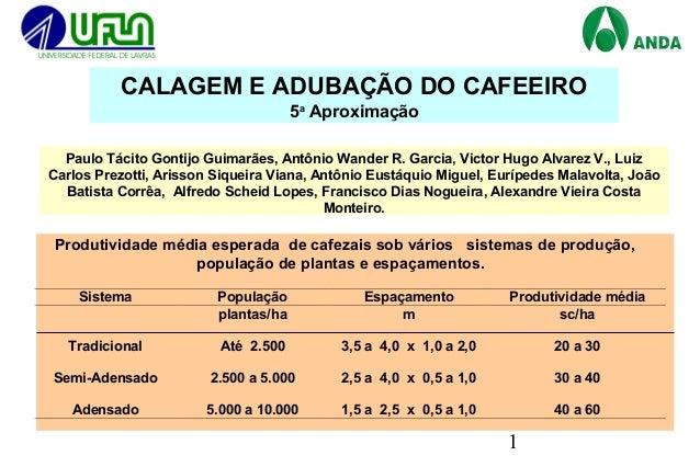 1 Paulo Tácito Gontijo Guimarães, Antônio Wander R. Garcia, Victor Hugo Alvarez V., Luiz Carlos Prezotti, Arisson Siqueira...