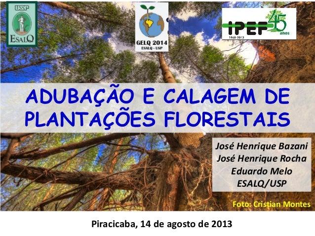 ADUBAÇÃO E CALAGEM DE PLANTAÇÕES FLORESTAIS Piracicaba, 14 de agosto de 2013 José Henrique Bazani José Henrique Rocha Edua...