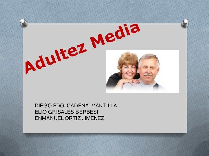 DIEGO FDO. CADENA MANTILLAELIO GRISALES BERBESIENMANUEL ORTIZ JIMENEZ