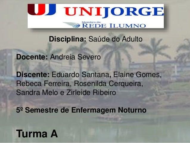 Disciplina: Saúde do Adulto  Docente: Andreia Severo  Discente: Eduardo Santana, Elaine Gomes,  Rebeca Ferreira, Rosenilda...