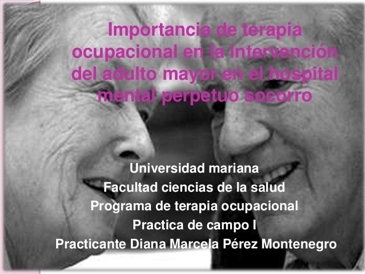 Importancia de terapia ocupacional en la intervención del adulto mayor en el hospital mental perpetuo socorro <br />Univer...