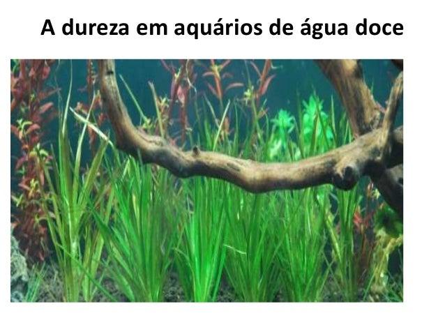 A dureza em aquários de água doce