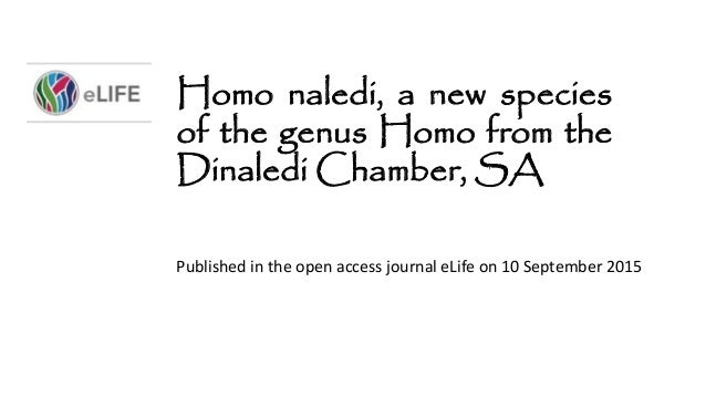 Homo naledi, a new species of the genus Homo from the Dinaledi Chamber, SA Published in the open access journal eLife on 1...
